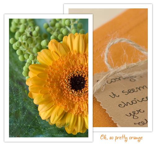 orange-color-oh-so-pretty-orange