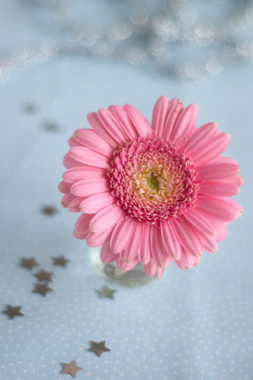 flower-with-sparkles