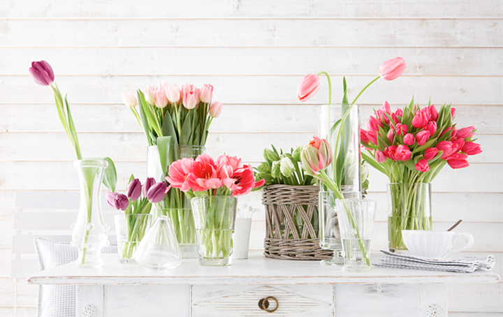 cover-tulips-on-the-table