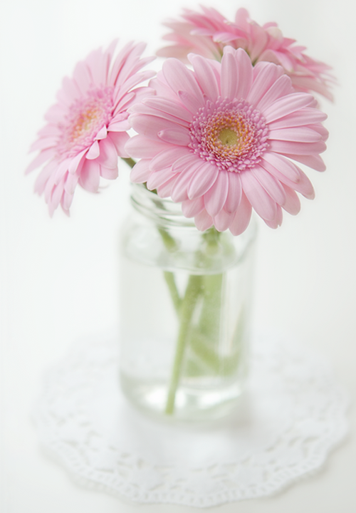 flowers-cover-image