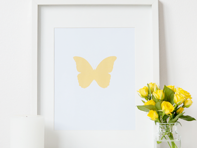 yellow-butterfly-white