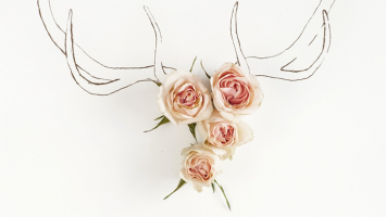 antler-and-roses
