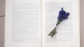 79ideas_lavender