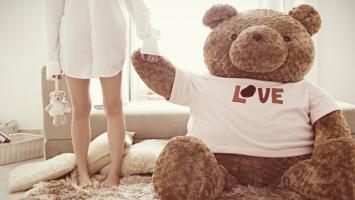 the-teddy-bear-and-the-girl