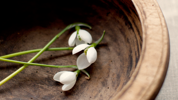 79ideas-snowdrops-in-wooden-cup