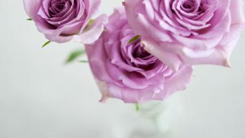 79ideas-happy-valentines-day