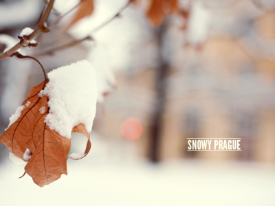 79ideas-snowy-prague