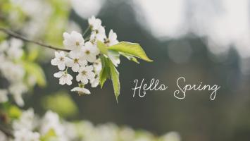 79ideas-hello-spring