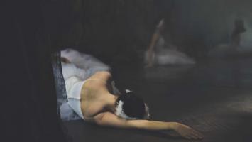 swans_story_by_lar_rattray_via_79ideas