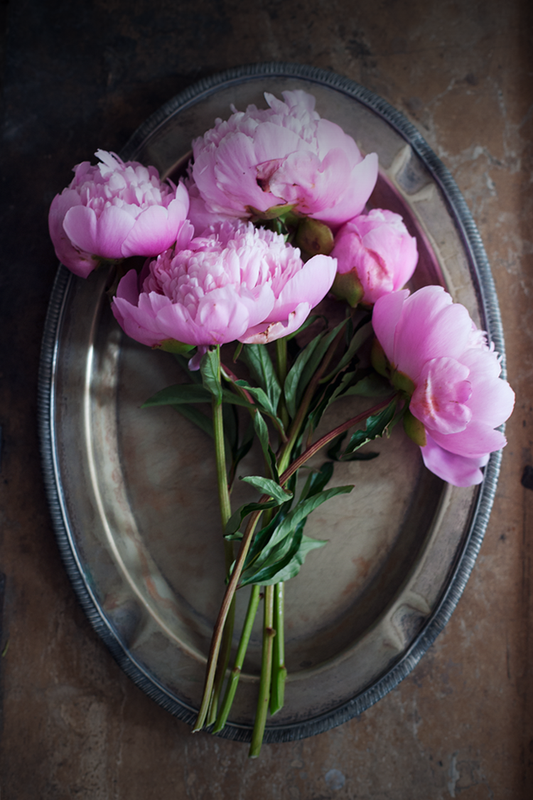 79ideas_pink_peonies