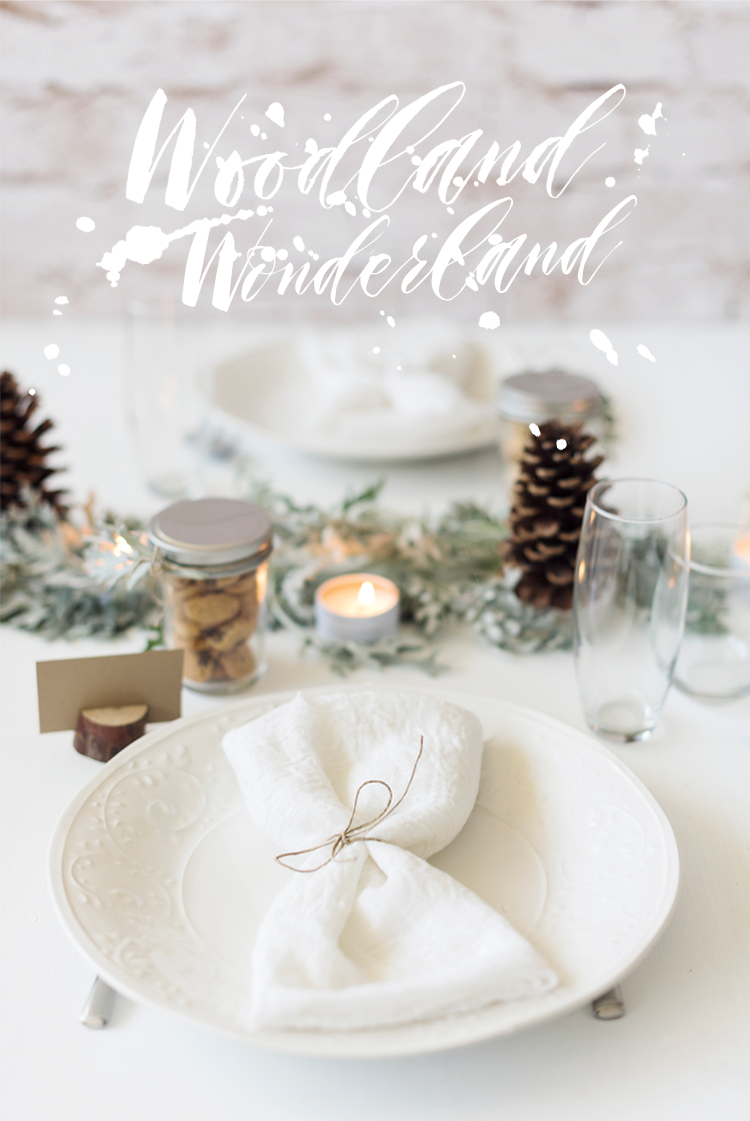 radostina_photography_winter_wonderland_for_beau_coup