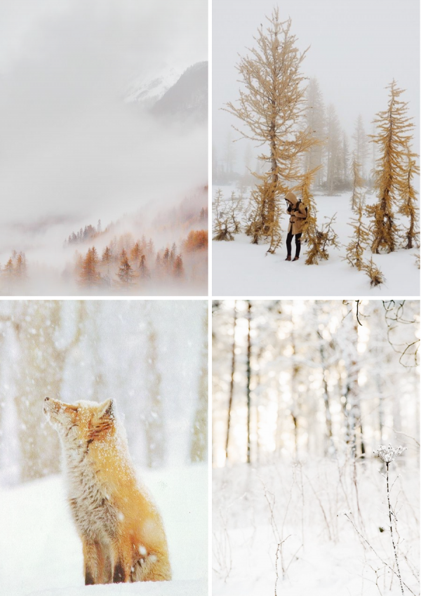 79ideas_winter_escape_snow_nature